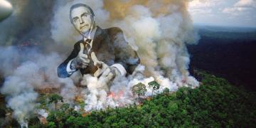 Bolsonara, Brazil, populism, amazon fires